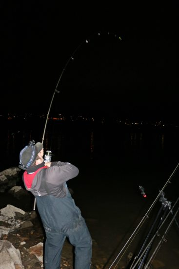 Lakefiske i Glomma 1