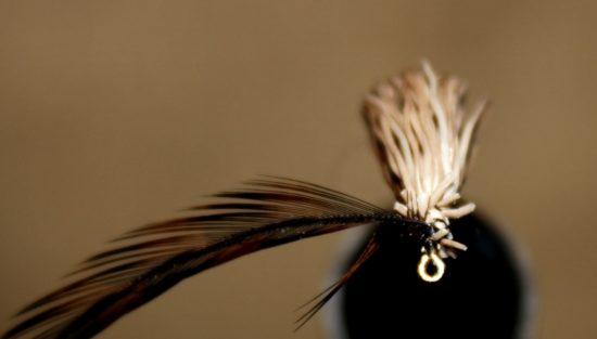 Ribb de nederste fibrene fra hackelfjæra, og bind den inn så den står vinkelrett ut fra det som blir kommer til å bli fremkroppen. Foto: Lasse Bøe