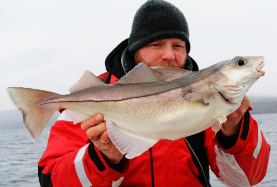 Lysingfiske i januar (2)