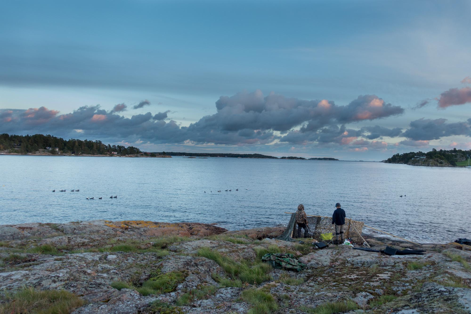 Utsikt mot havgapet - Sjøfugljakt