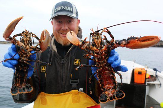 hummerfiske-med-lars-ivar-3