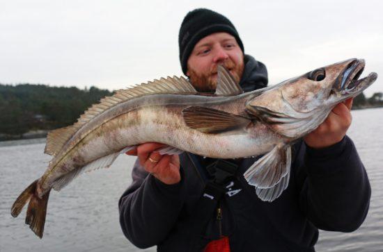 lysingfiske-5