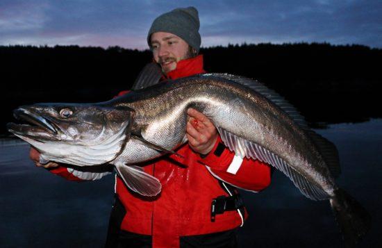 lysingfiske-6
