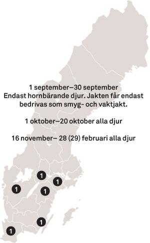 Jakttid Dåhjort Dovhjort Sverige