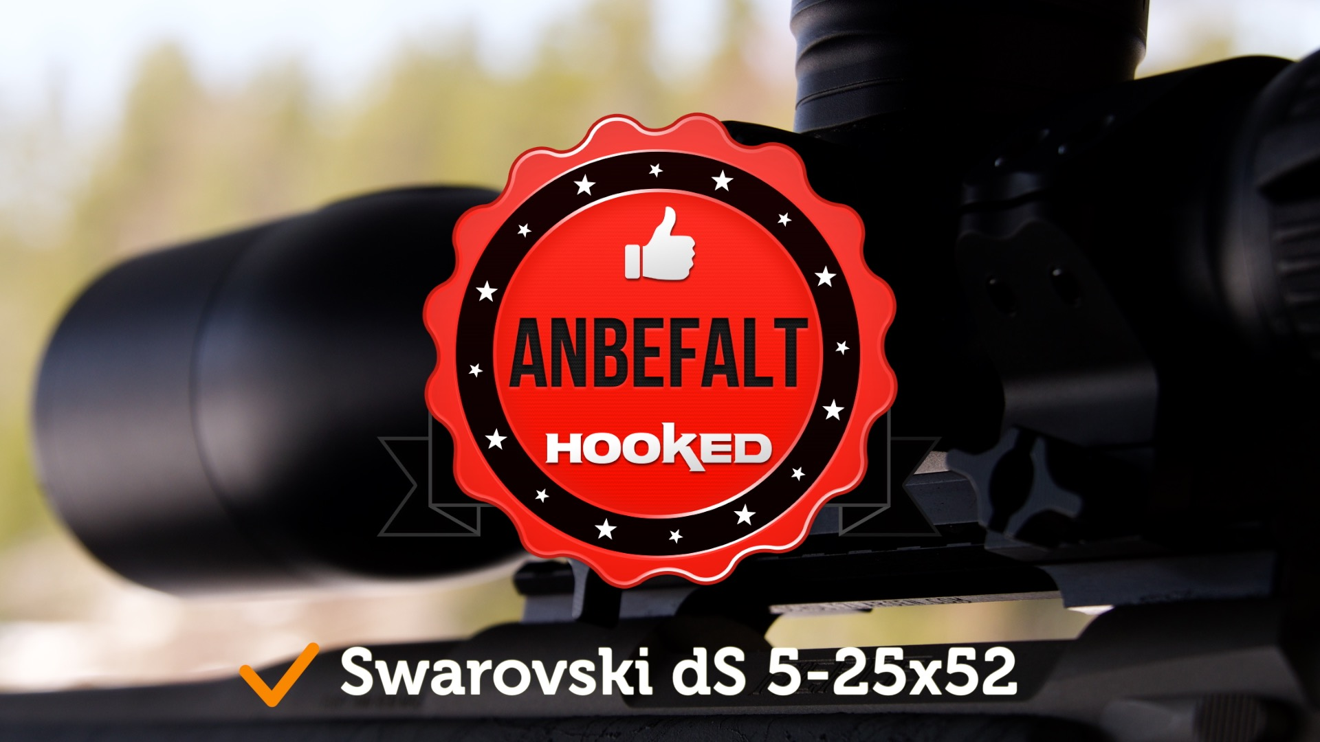 Test av Swarovski DS